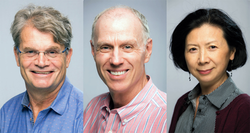 Cheriton School of Computer Science Professors George Labahn, Peter Forsyth and Yuying Li