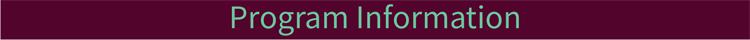 program information title bar