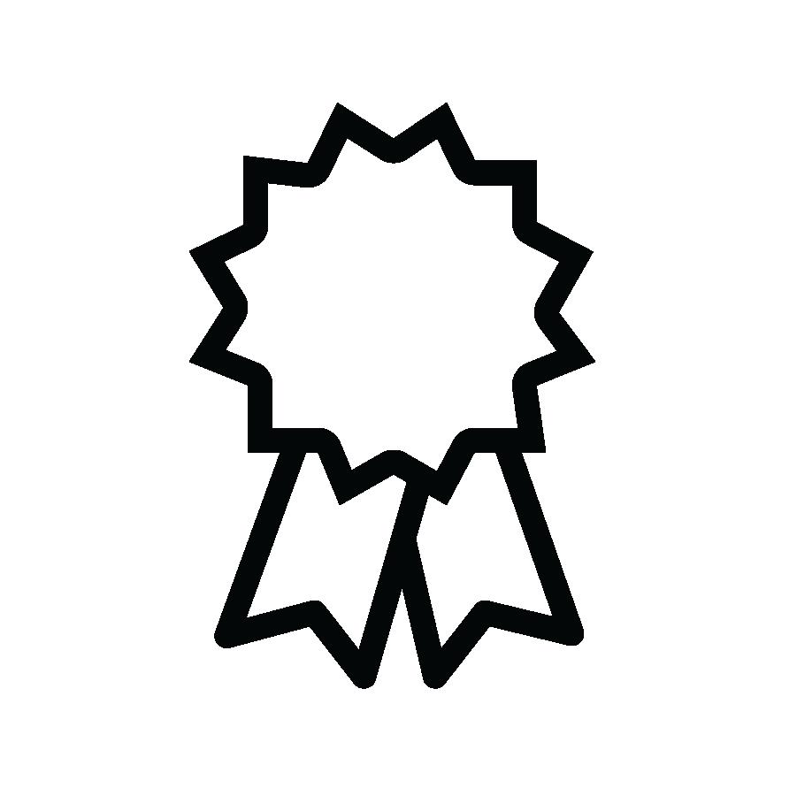 Icon of an award ribbon