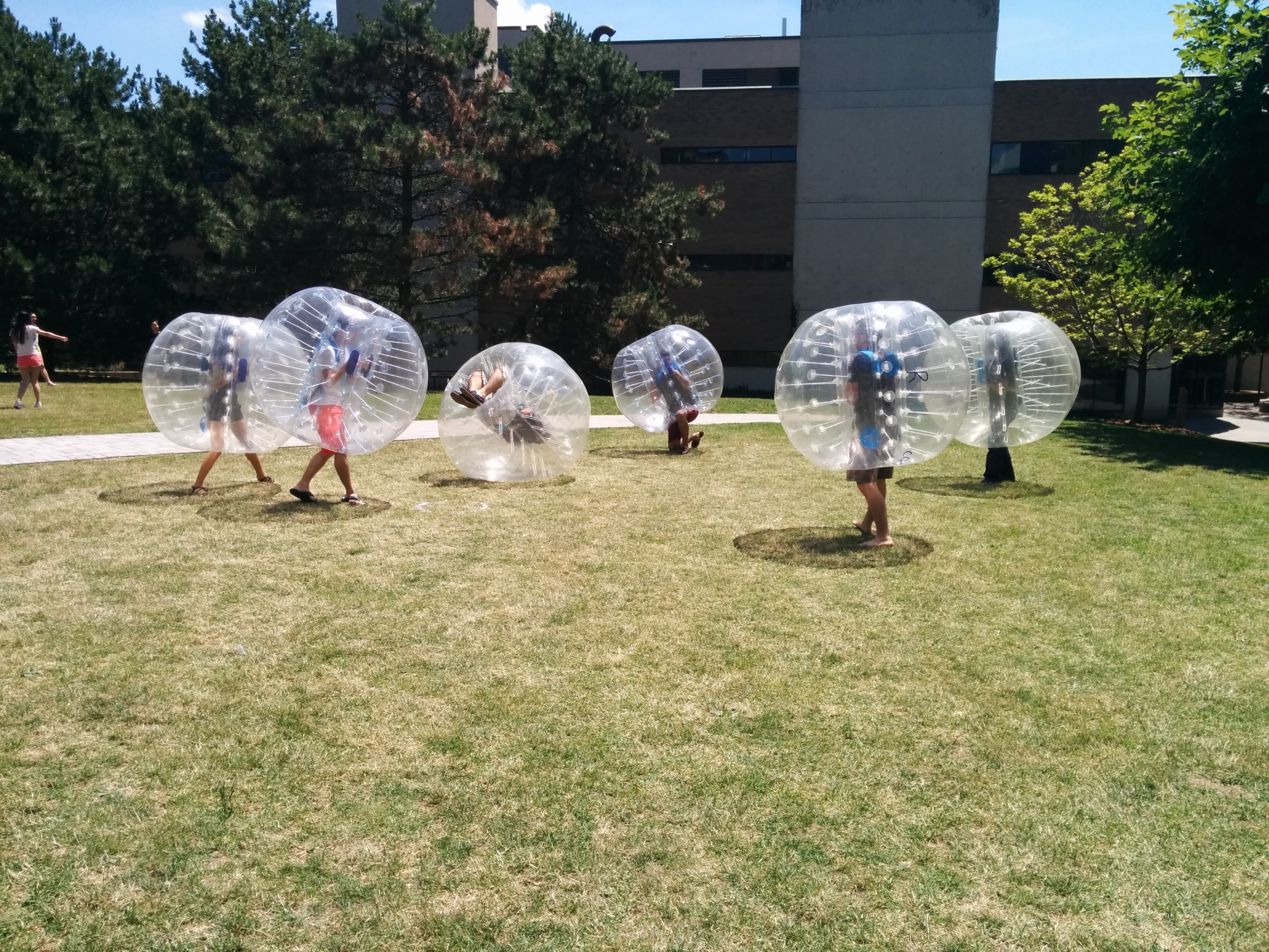 Bubble soccer players on campus