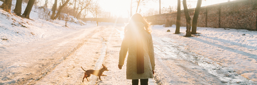A woman walks a dog in a winter setting.