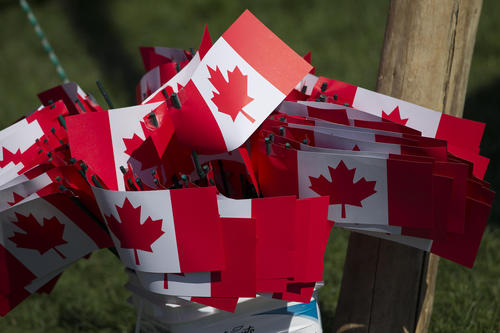 A cluster of small Canadian flags wave in the breeze