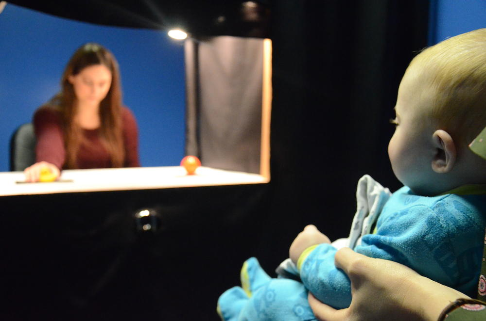 Infant looking at a stage