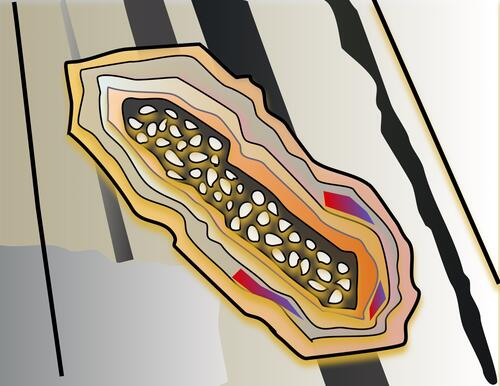 Illustration of a pocket of pebbly rock surrounded by layers of other rock