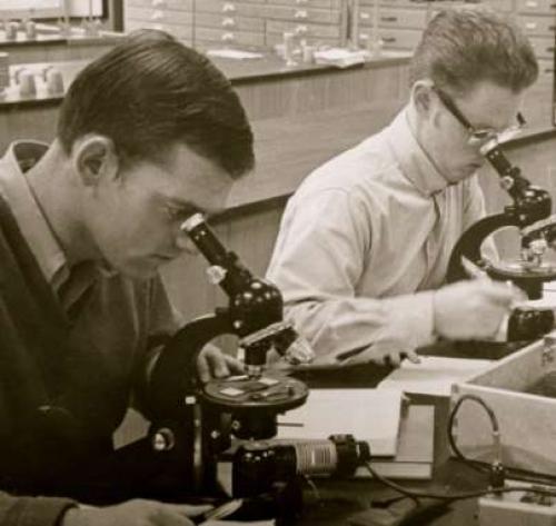 1970 2nd Year Petrology Class