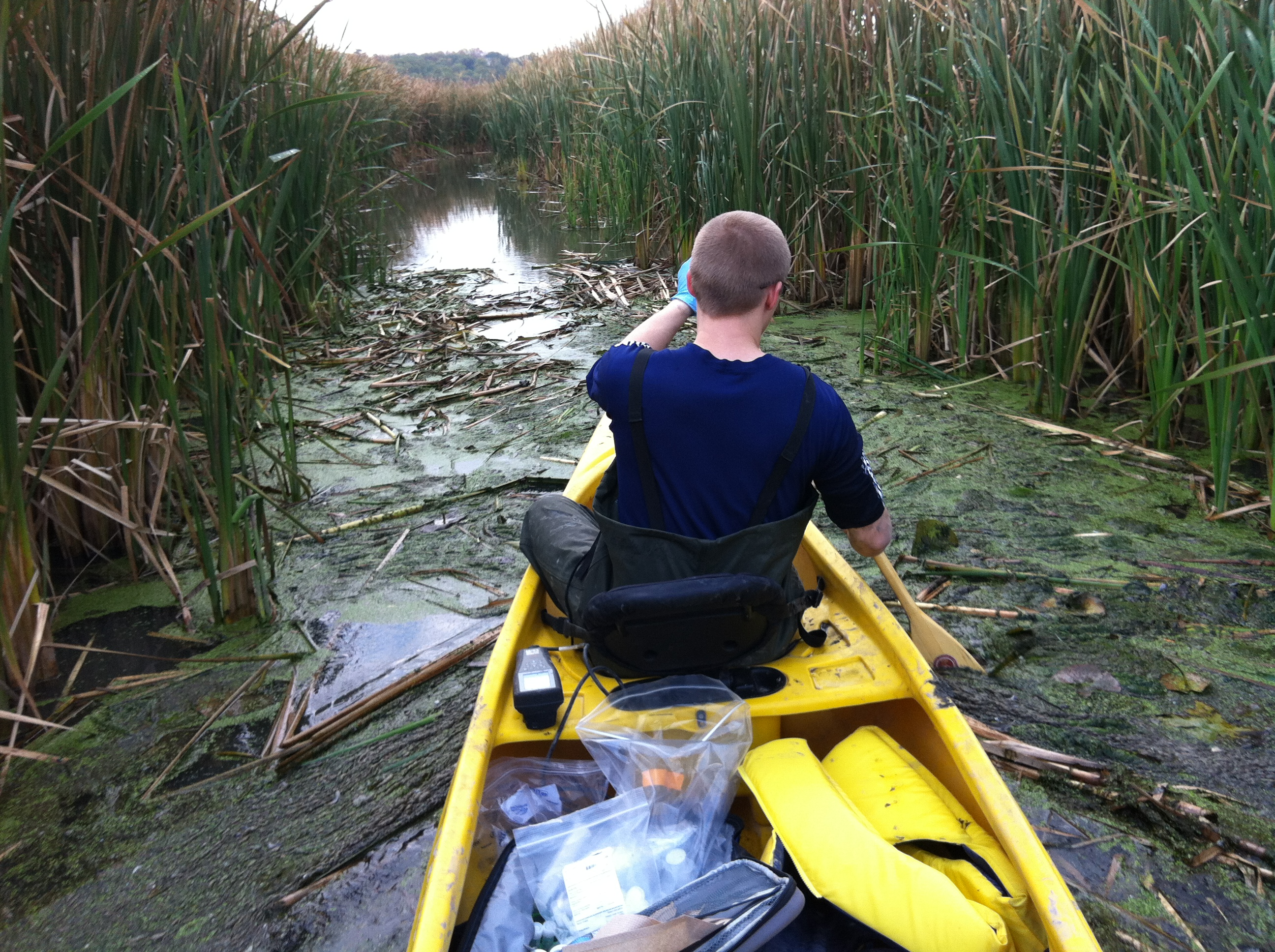 Chris Parsons on a sampling trip in Coot's Paradise near Toronto.