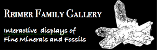 Interactive Displays of Fine Minerals and Fossils.