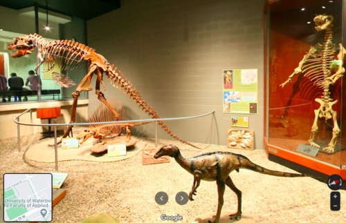 Dino Pit