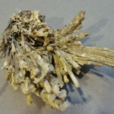 Stibiconite; dull yellow colour
