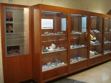 Mineral Gallery Case