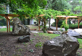 Image from Peter Russell Rock Garden