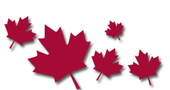 Canadian Maple Leaves
