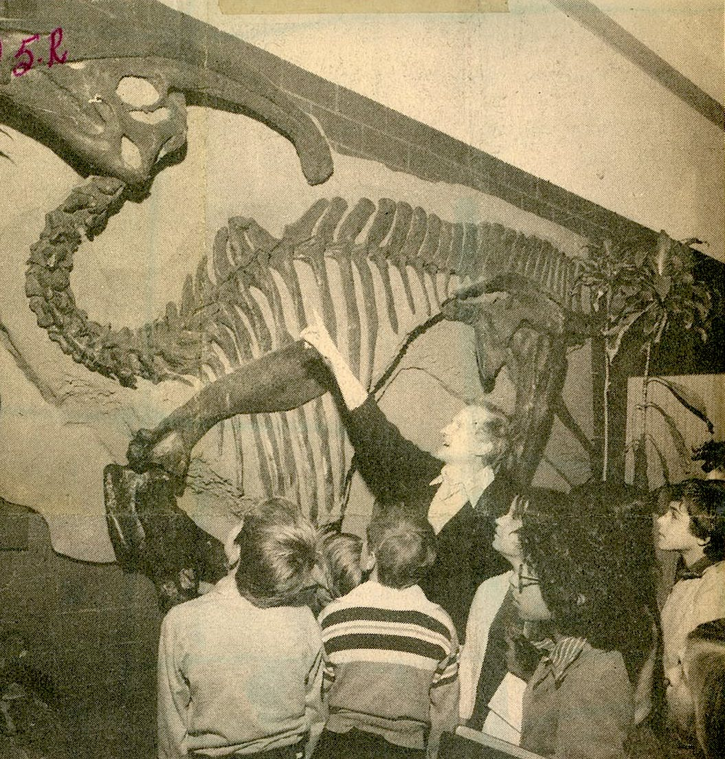 Frank Brookfield pointing at a Parasauolophus dinosaur skeleton in the 1970's