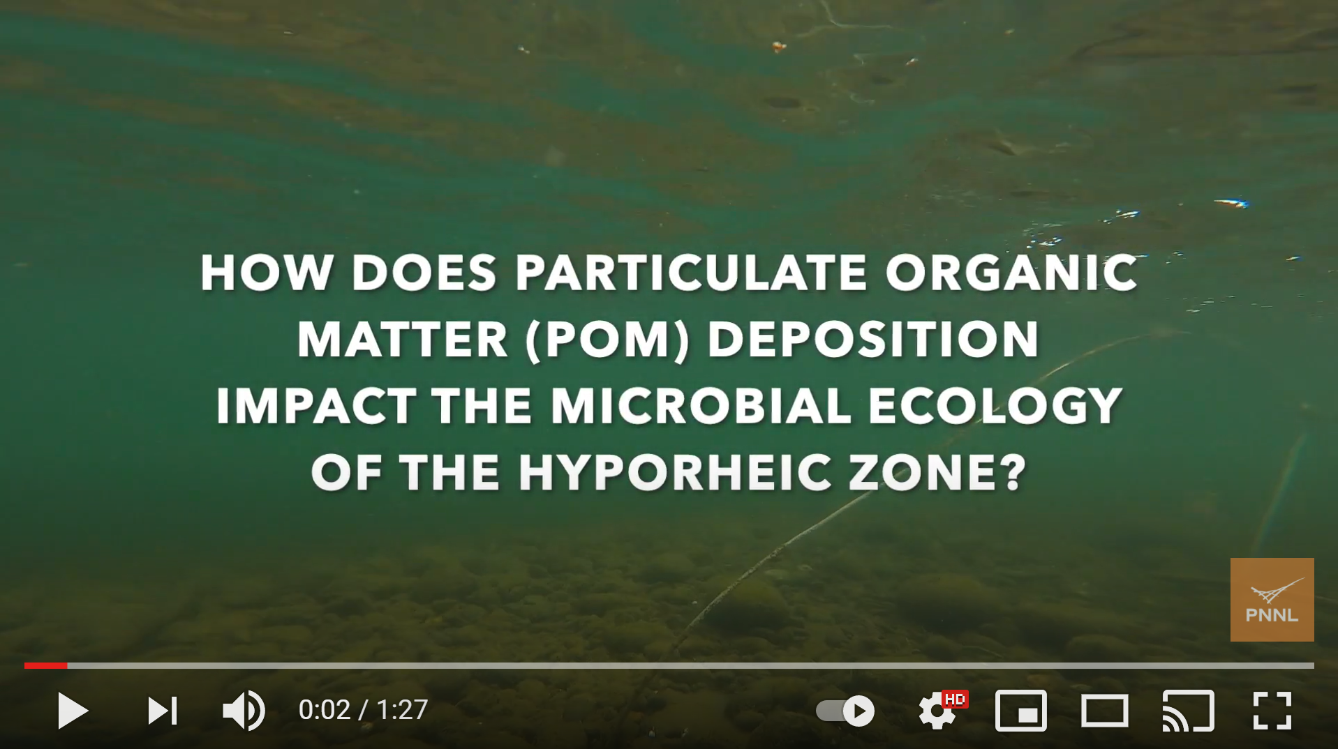 Particulate organic matter dynamics in hyporheic zone