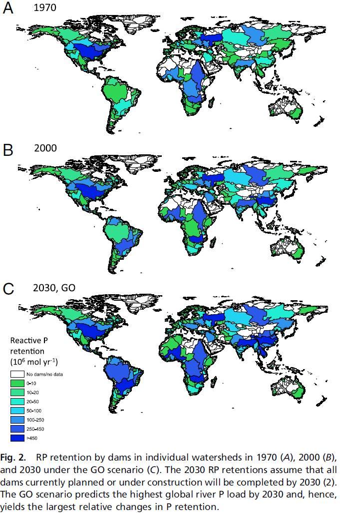 Reactive phosphorus (RP) retention by dams worldwide