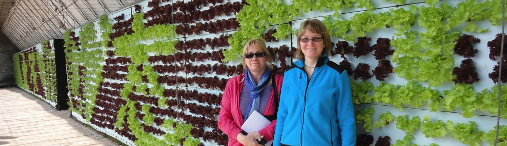 Steffanie and Theresa in front of a lettuce board in an ecological farm in Dalian