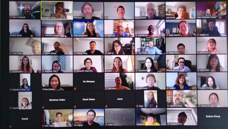 20 people in a gallery view in an online meeting