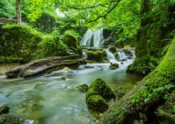 gentle waterfall and stream