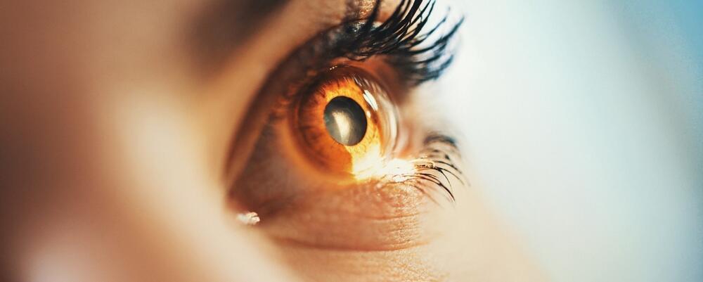 Closeup of an eye.