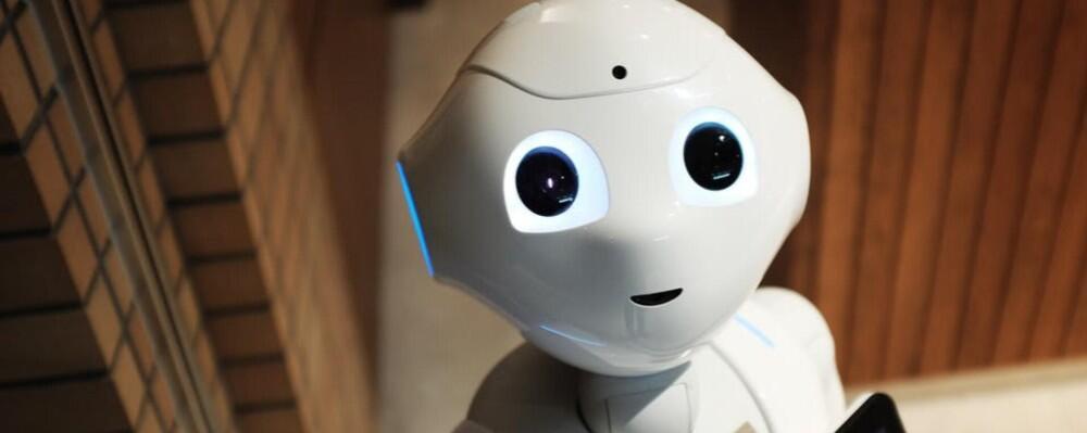 A humanoid robot.