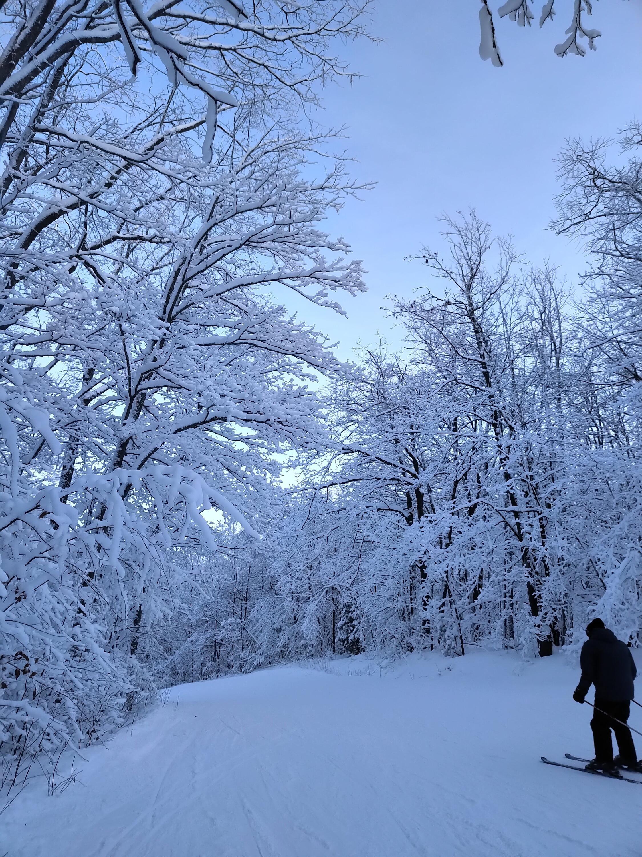 Snowy ski hill with skier