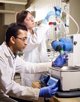 graduate students conducting an experiment in a lab