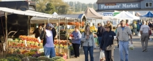 People shopping at St Jacobs Farmers' Market.