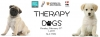 Therapy Dogs poster