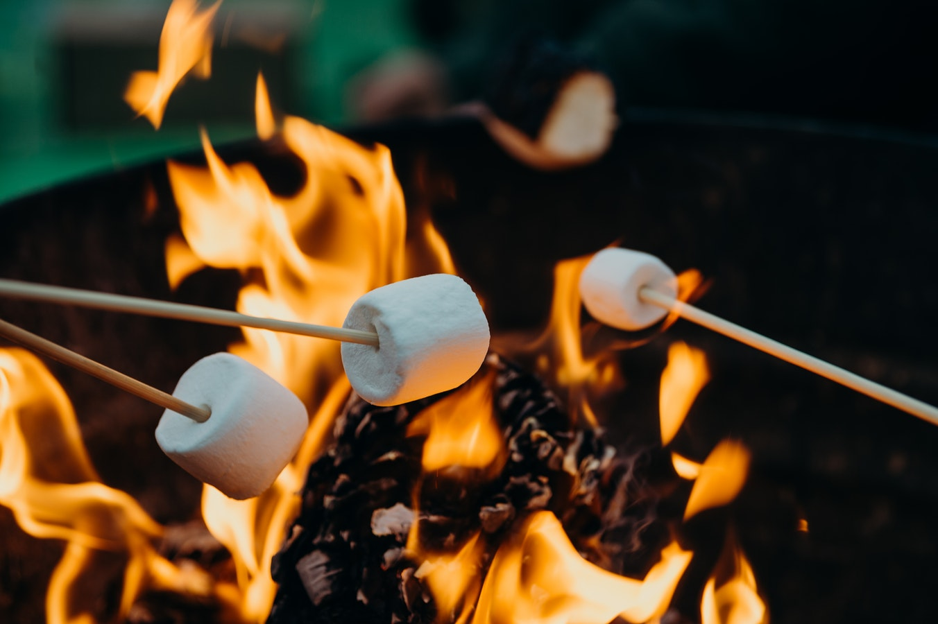 Roasting marshmallows over bonfire