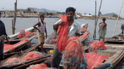 An Indian fisherman with nets over his shoulder
