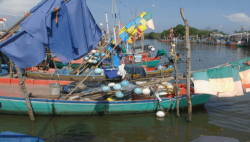 Colorful Indian fisher boats
