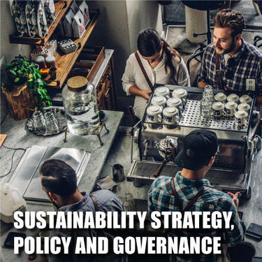 Sustainability Strategy, Policy and Governance
