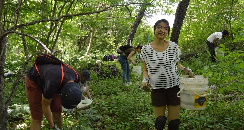 Female student smiles, holding bucket in middle of forest on a sunny day while students around her pull weeds