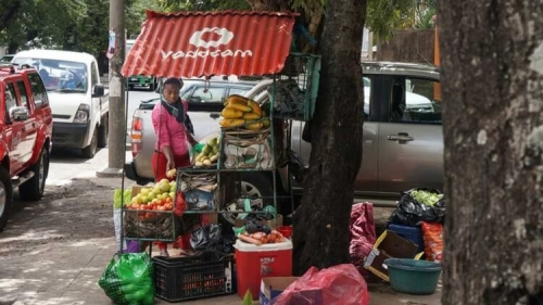 Woman sets up street side market