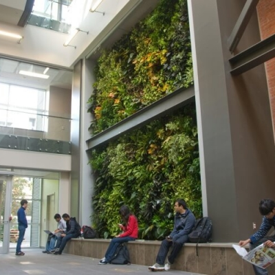 A two story living wall with students sitting at its base.