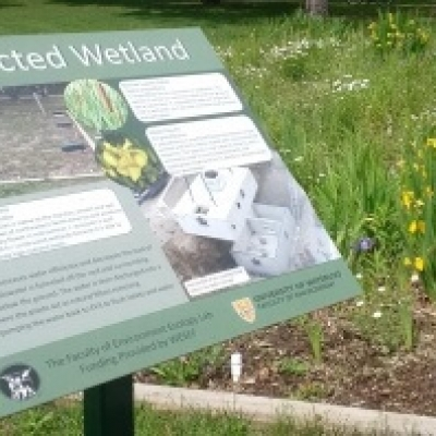 A sign listing the features of a constructed wetland plot behind it.