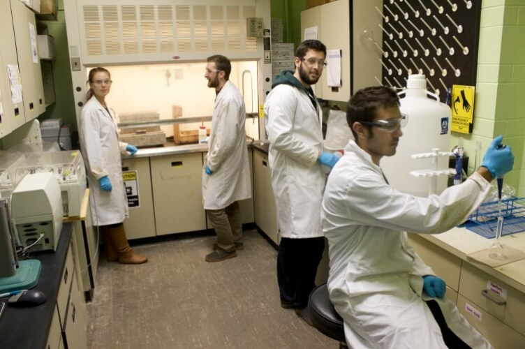 Four student in lab coats tidying up lab