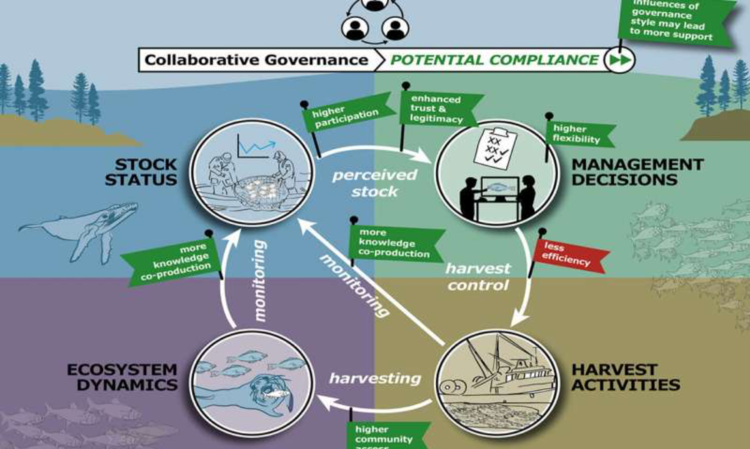 A diagram depicting governance, compliance and inertia in a typical management cycle.