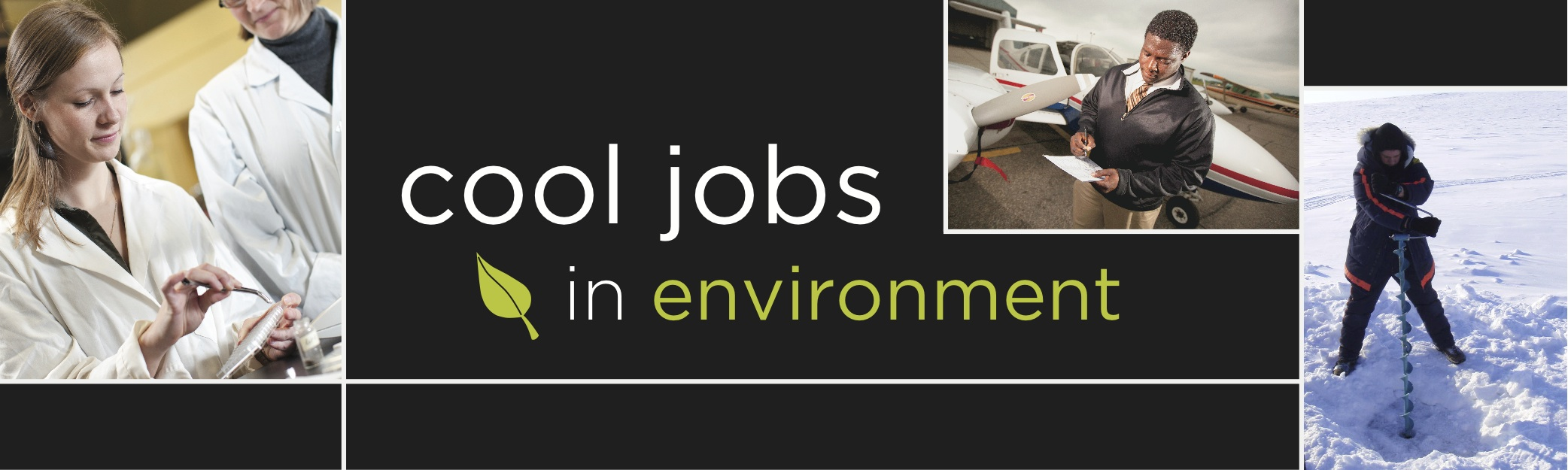 careers in environment environment