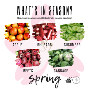 Spring Apple rhubarb cucumber beets cabbage