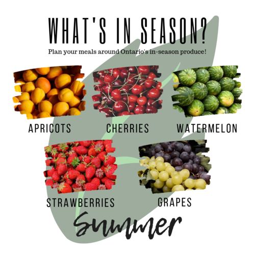 Summer apricots cherries watermelon strawberries grapes