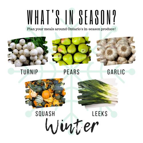 Winter turnip pears garlic squash leeks