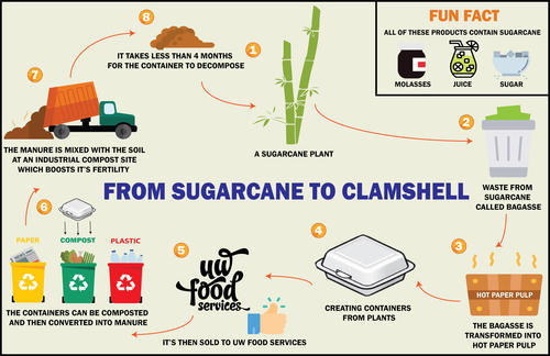 Process of how a bagasse clamshell is created
