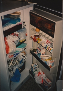 Fridge at Dugan apartment