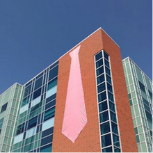 Mathematics 3 building with huge pink tie on the side of it