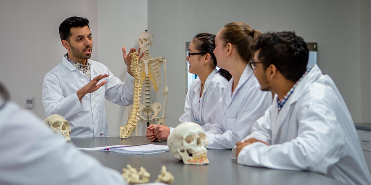 Students in the University of Waterloo anatomy lab