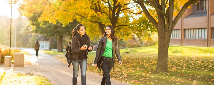 2 students walking along path at the University of Waterloo with beautiful fall colours