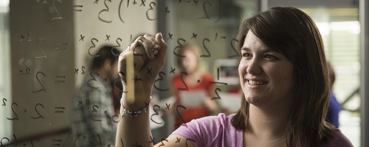 Pure Mathematics | Undergraduate Programs | University of