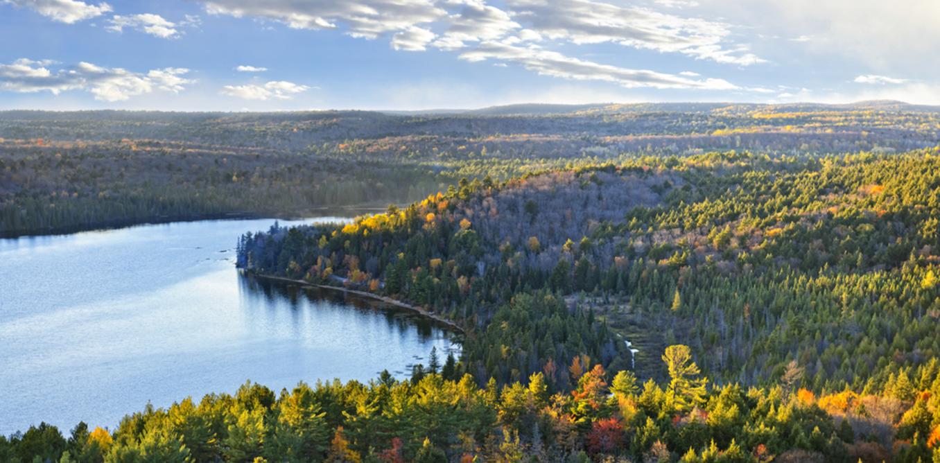 Boreal Lake