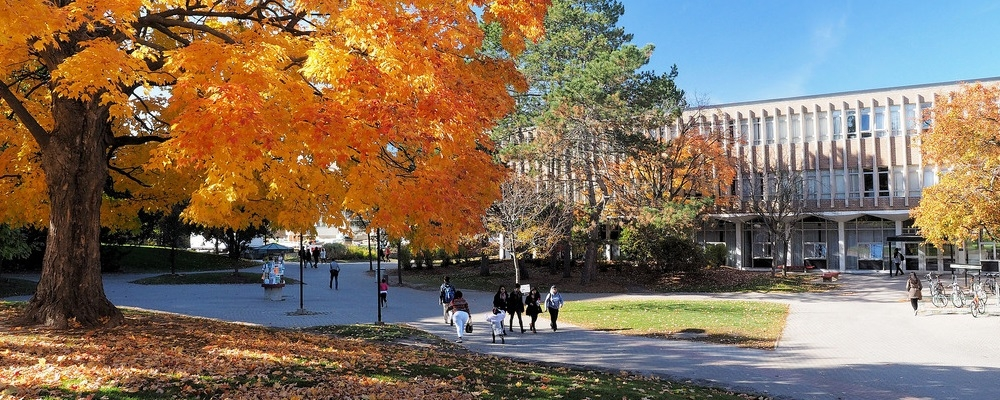 Fall 2016 image of students and trees on campus